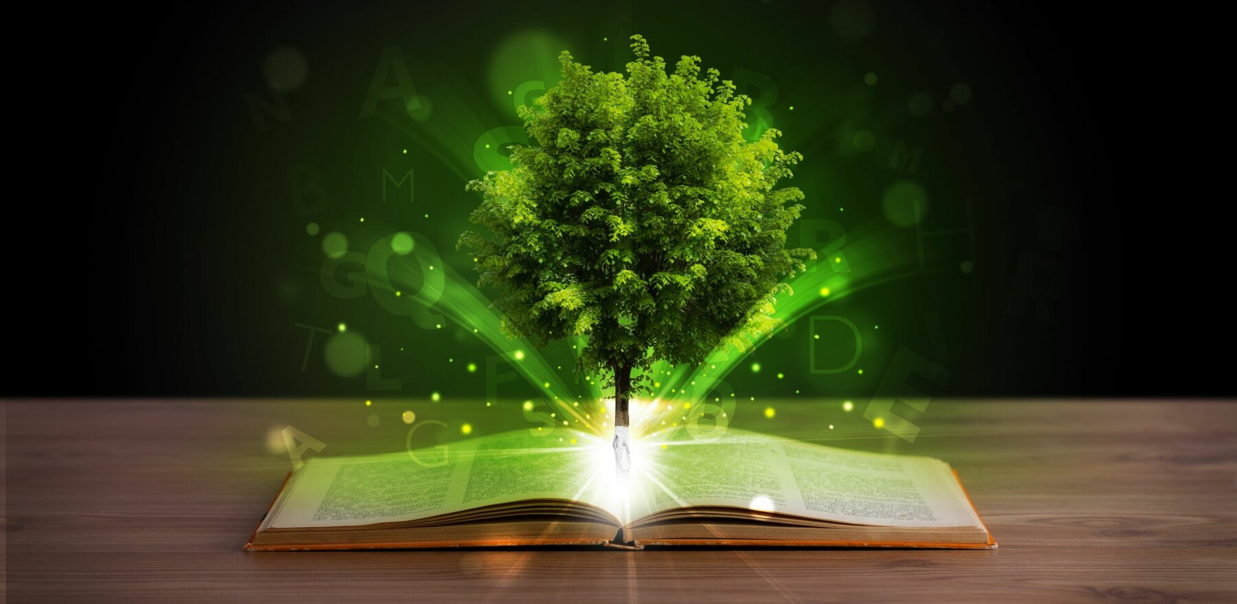 22043499 - open book with magical green tree and rays of light on wooden deck